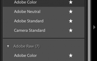 Adobe-Lightroom-Profiles-New-Interface-Franesco-Gola-4