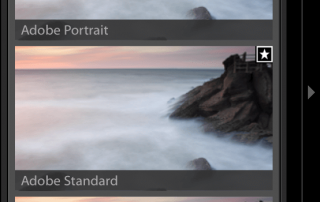 Adobe-Lightroom-Profiles-New-Interface-Franesco-Gola-5