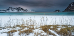 Francesco Gola Latest Images